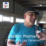 Walter Mamani, técnico de Los Canarios 2020